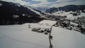 Auerbauer im Winter