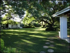A garden outside Mtuba Manor Guest House