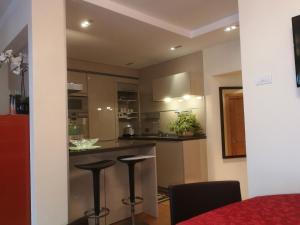 Kuchyň nebo kuchyňský kout v ubytování Chalet Mottolino