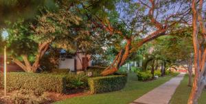 A garden outside Airport International Hotel Brisbane