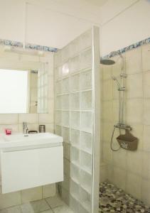 A bathroom at Gîte Hibiscus Destrellan