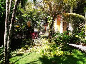 A garden outside Pousada Dos Artistas