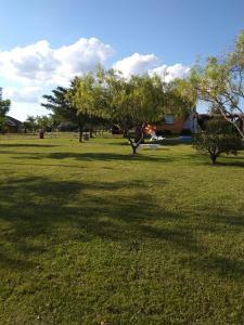 Jardín al aire libre en Termas Sol Y Luna
