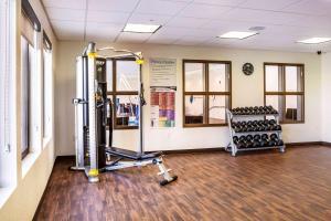 Gimnasio o instalaciones de fitness de Comfort Inn & Suites Niagara Falls Blvd USA