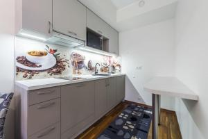 A kitchen or kitchenette at Karlson Lux Apartments
