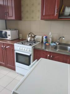 Кухня или мини-кухня в Apartment on Magistralnaya 33/1