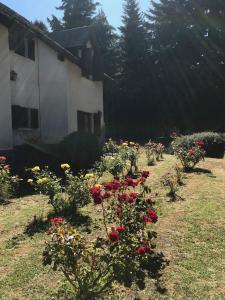 Un jardín fuera de Posada del Angel