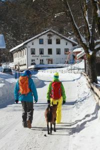 Gasthof Fallmühle im Winter