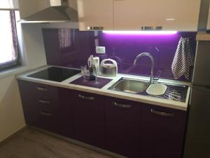 Kuchyňa alebo kuchynka v ubytovaní Apartment Villa Barić 4412