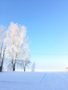 """Коттеджный комплекс """"Уютный причал"""" зимой"""