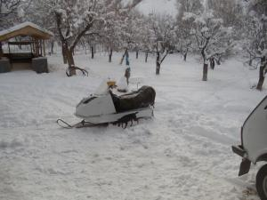 Hermonatun зимой