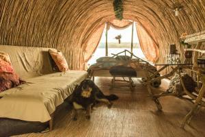 Atpūtas zona naktsmītnē Bebru māja - Beaver house