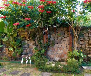 Ein Garten an der Unterkunft Portal dos Borbas