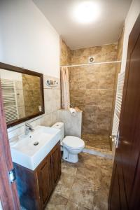 A bathroom at Pensiunea Dunavis