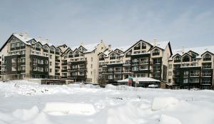 Premier Luxury Mountain Resort during the winter