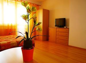 Televízia a/alebo spoločenská miestnosť v ubytovaní Penzion Fortuna Dudince