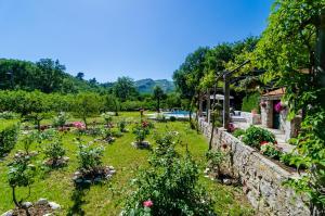 A garden outside Villa Green Paradise