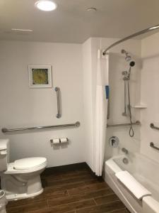 A bathroom at Hampton Inn & Suites St. George