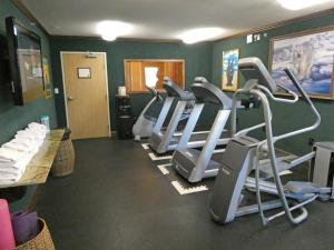 The fitness centre and/or fitness facilities at Pike's Waterfront Lodge