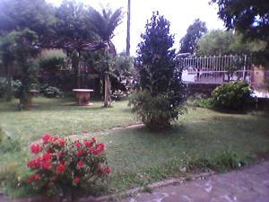 A garden outside Hostel Famiglia Susin