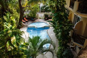 Uitzicht op het zwembad bij Hotel Riviera Del Sol of in de buurt