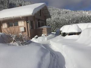 Les Bruyeres during the winter