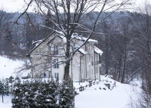 Obiekt Pensjonat Irena zimą