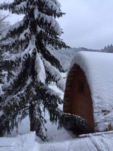Penzion V Hluboké a Department Glamp v zimě