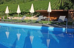 Der Swimmingpool an oder in der Nähe von Runggnerhof