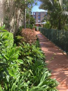 A garden outside Town Beach Beachcomber Resort