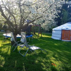 Ein Garten an der Unterkunft Pension New Nomads