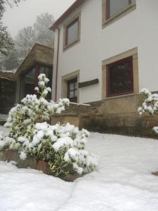 Quinta das Aveleiras durante o inverno