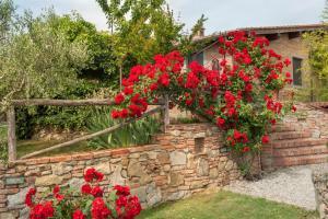 A garden outside Agriturismo Pratovalle