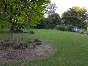 A garden outside Sue's Sanctuary