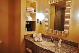 A bathroom at Holiday Inn Express Orlando-Ocoee East, an IHG Hotel