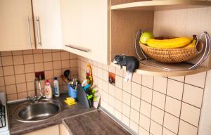 Кухня или мини-кухня в Апартаменты Городской Вал 14