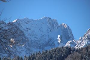 Alpen - Apartments during the winter