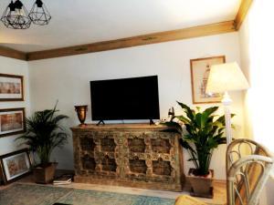 Televízia a/alebo spoločenská miestnosť v ubytovaní Apartman Vila Terrasse 2