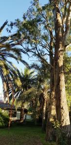 Un jardín fuera de Posada El Prado