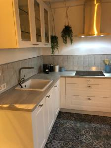 Een keuken of kitchenette bij Boothuis Harderwijk