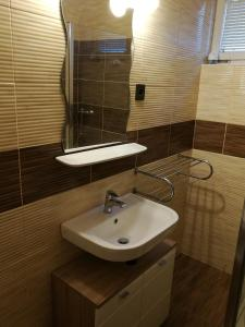 A bathroom at Loki Apartman