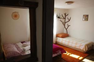 Легло или легла в стая в Patashka House