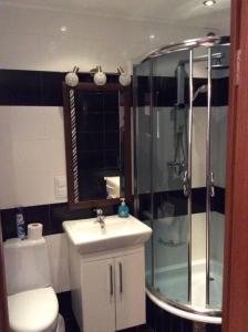 A bathroom at Apart na Himnaziinoi naberezhnii