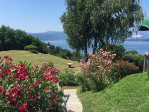 A garden outside Locanda Pozzetto