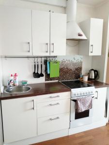 Кухня или мини-кухня в Apartments na Academicheskoy
