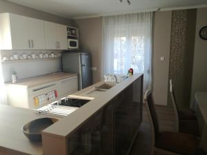 A kitchen or kitchenette at Forrás-G Vendégház