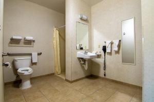 A bathroom at Executive Inn & Suites Upper Marlboro