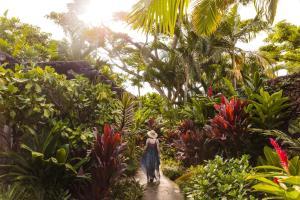 Guests staying at Four Seasons Resort Hualalai