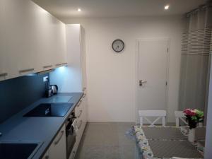 Kuchyňa alebo kuchynka v ubytovaní Dvojizbový byt, Levice