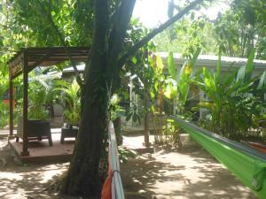 Der Swimmingpool an oder in der Nähe von Aracari Garden Hostel